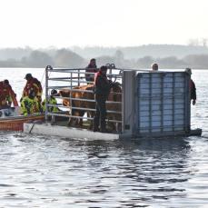 Die Freiwillige Feuerwehr Preetz schieb das Floß mit Hilfe eines Motorbootes in Richtung Ufer.